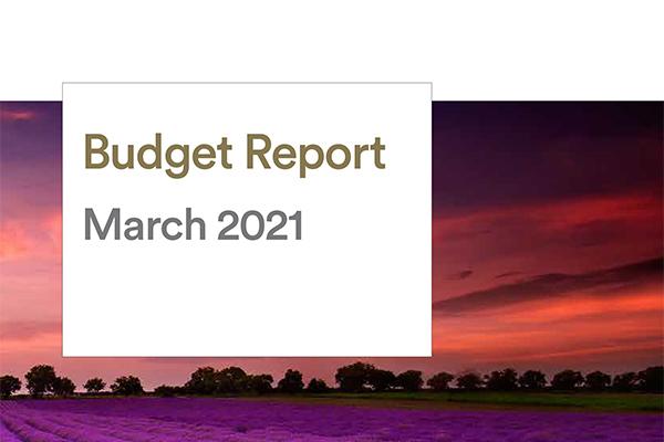 Omnium wealth budget report website image